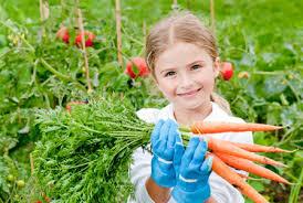 otrok ne je sadja in zelenjave